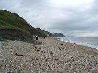 Lyme Regis, Jurassic Coast