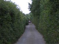 narrow British streets
